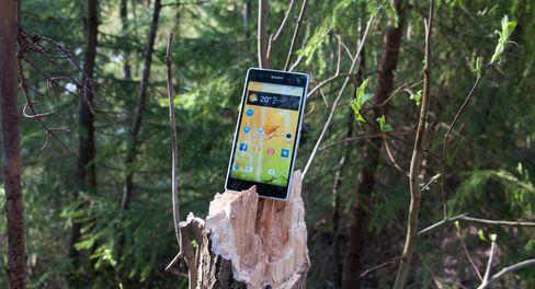 Det gjør den svært godt egnet til turer i skog og mark.