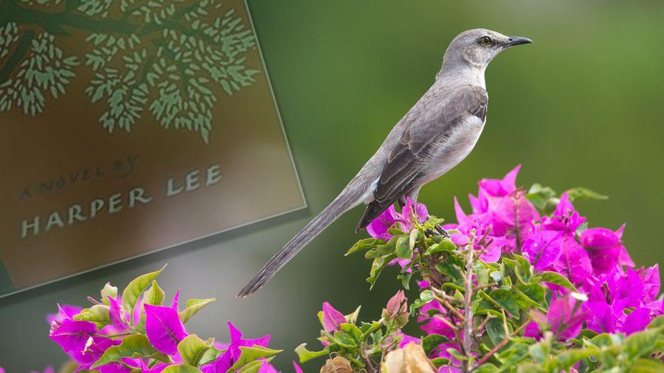 To Kill a Mockingbird kommer omsider som e-bok