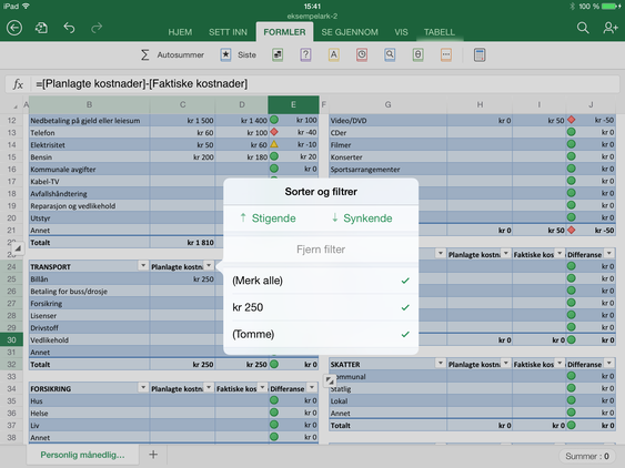 Microsoft Excel for iPad.
