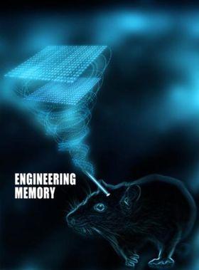 Studien heter «Engineering memory».