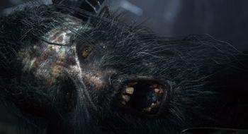 Dark Souls-skaperne avslører sitt neste spill
