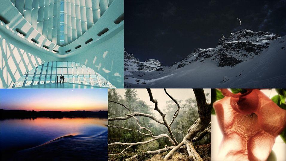 Disse iPhone-bildene er kåret til fjorårets beste