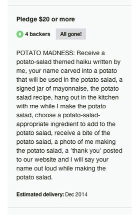 Det er nok av hårete mål på prosjektets Kickstarter-side.