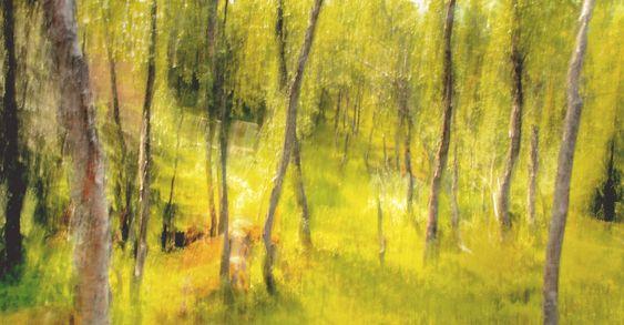 Bevisst bruk av lang lukkertid og medfølgende bevegelsesuskarphet har gitt dette bildet et tiltalende malerisk effekt. .