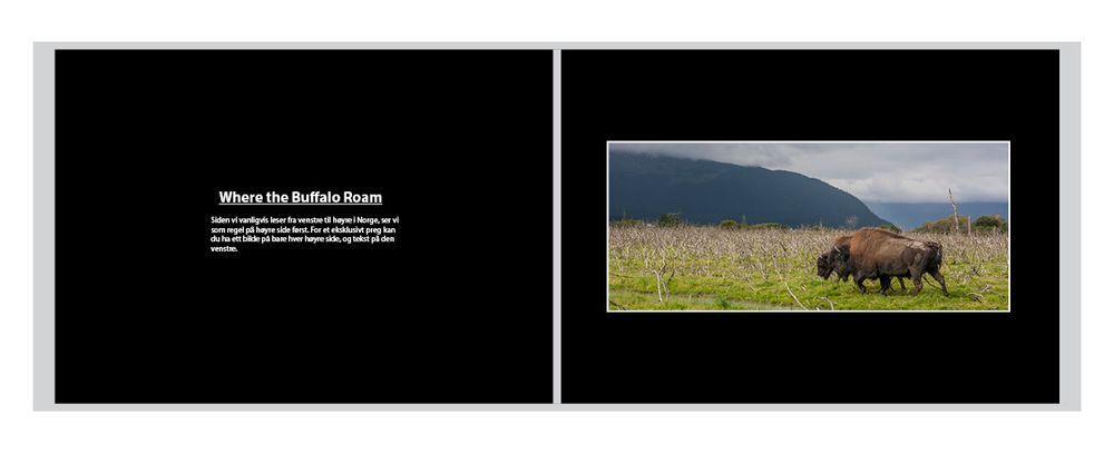 Hvis du vil gi boken et mer eksklusivt preg kan du ha kun ett bilde på annenhver side (hver høyre side) og litt tekst om bildet på den andre.