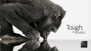 Frem til i dag har det vært Cornings Gorilla Glass vi har hørt mest om. Nå ser det ut til at mobilbransjen beveger seg mot safirglass.