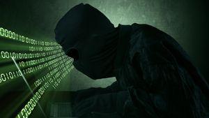 Nå skal «elite-hackerne» tas
