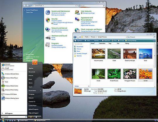 Mange Vista-brukere endte opp med å måtte bruke standardtemaet, Basic, i stedet for det lekre og gjennomsiktige Aero-temaet.