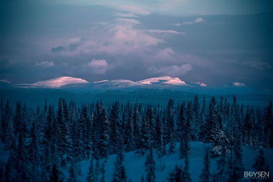 «Rondane by december».