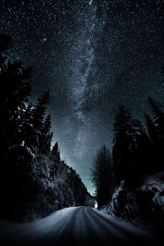«Desembernatt».
