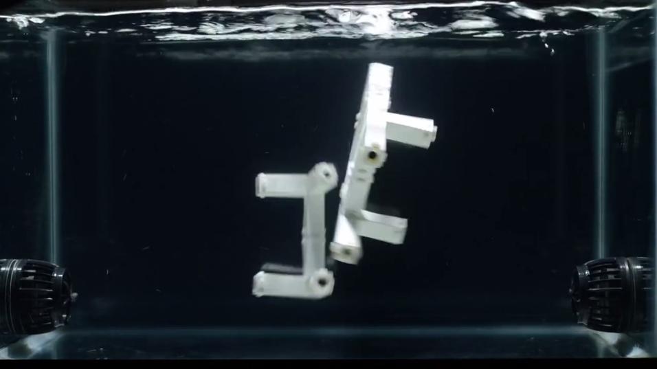 Delene flyter rundt i en vannbeholder før de settes sammen på egen hånd.