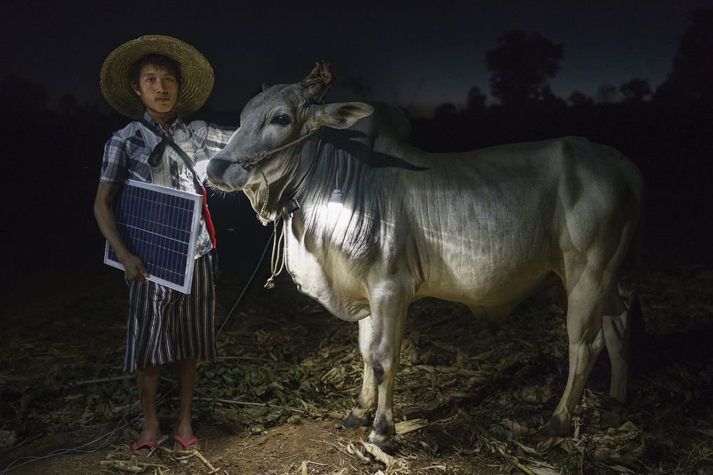Mg Ko, 20 years old. A Shan farmer with his cow in Lui Pan Sone Village. Kayah State. Myanma.