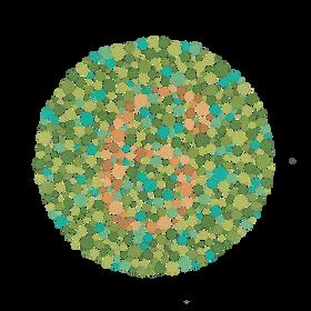Eksempel fra fargesynstest av Ishihara-typen. Kan du se tallet her?