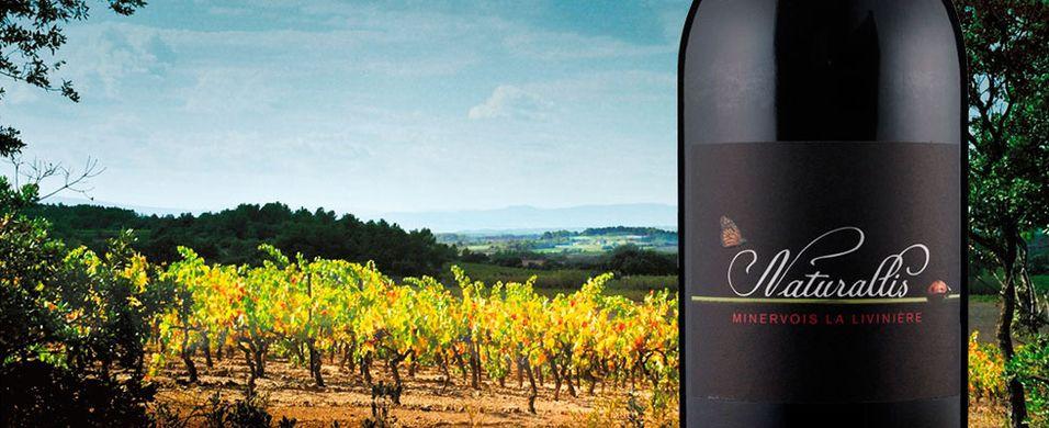 En slik rødvin gjør vinteren levelig