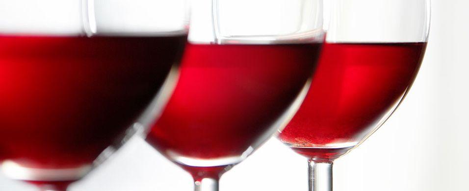 Gå ikke glipp av årets Gambero Rosso-smaking med det beste fra Italia – Vinkurs 15. januar i Oslo