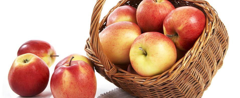 Her kan du lære om det som gjør norske epler så gode