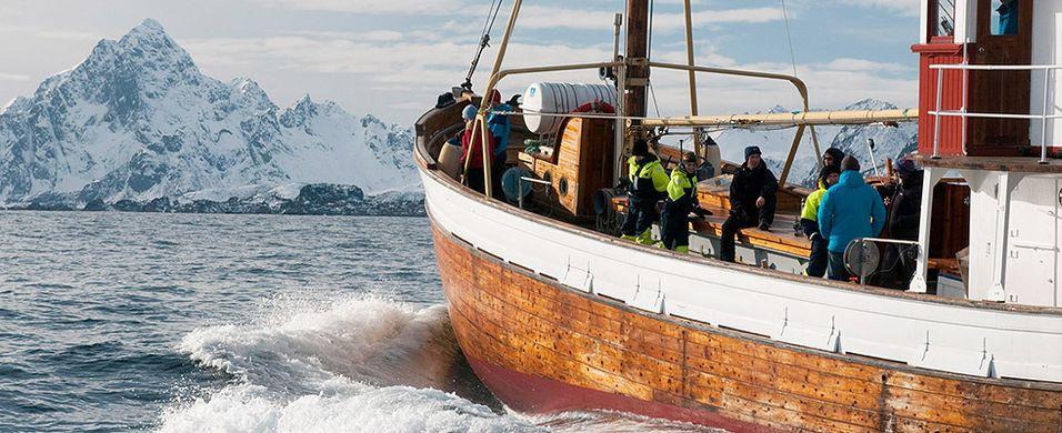 Matguruer til Arktisk Matfestival