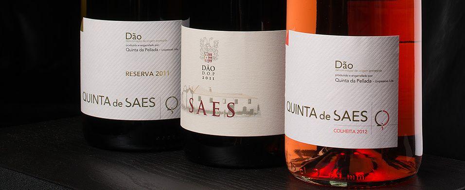 Vellykket vin i rødt, hvitt og rosa
