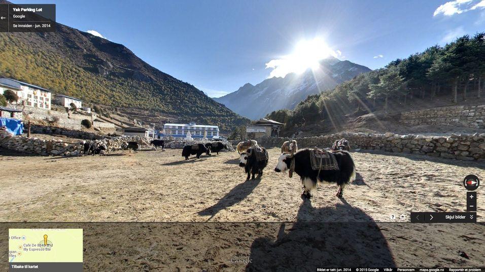 Her parkerer de yak-ene. Så vet du det.