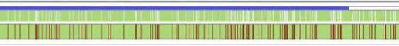 En bittorrent-fil deles opp i tusenvis av små deler som lastes ned i tilfeldig rekkefølge, og settes sammen. Her ser du fremdriften til en fil som er rundt 80 prosent nedlastet (grønt), der det mangler små biter (hvitt/rødt) gjennom hele fila. Selv om fila er 80 prosent ferdig, kan du ikke starte å se filmen før alle hullene er tettet.