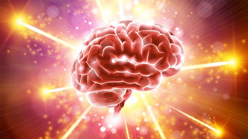 Så vanvittig avansert er faktisk hjernen din