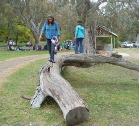 Barn skal få lov til å forme sine egne nasjonalparker i Adelaide. Her fra Hawthorndene, Adelaide, Australia.