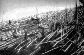 Slik så det ut i skogen etter nedslaget i Tunguska i 1908.