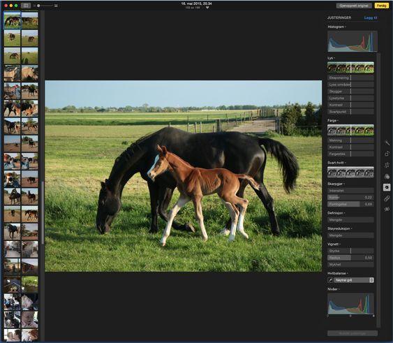 I Apple Bilder kan man utvide utvalget av bildejusteringsverktøy fra noen få til mange, noe som vil være populært blant litt kravstore digitalfotografer, vel å merke når man redigerer på Mac-en. iOS-versjonen har bare basisutvalget.