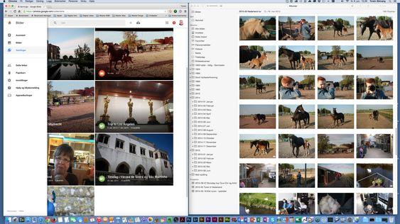 Mye er likt i Bilder fra Google (til venstre) og Apple Bilder. Men det er også en del ulikt under skallet. Slik ser programmene ut når man jobber med dem på en Mac – Google Bilder i en nettleser og Apple Bilder som eget program.