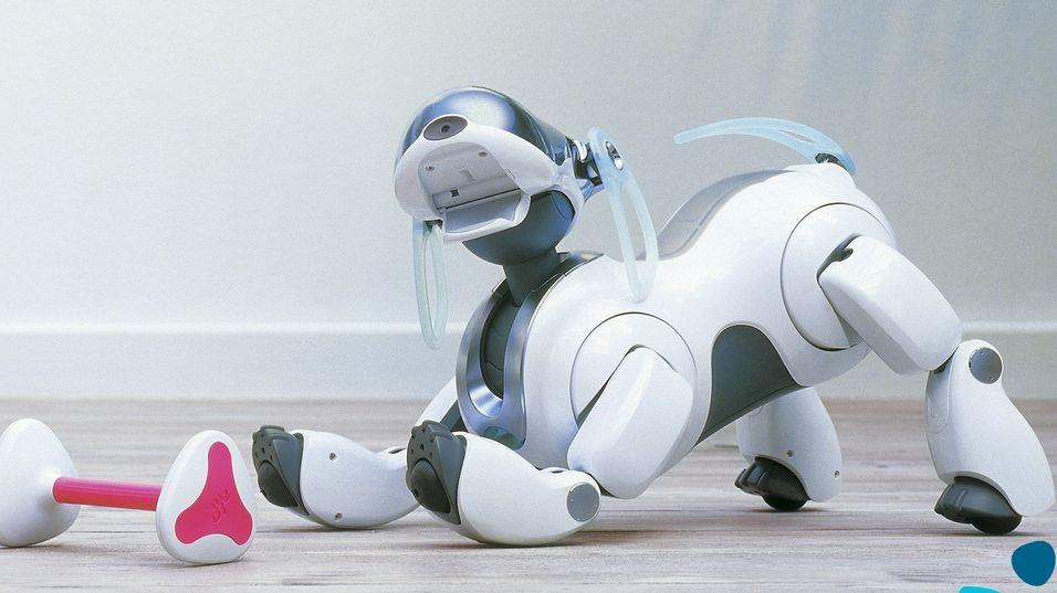 Robothundene holder på å dø ut