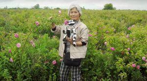 AIBO-eier Michiko Sakurai går ingen steder uten AIBO-en sin.