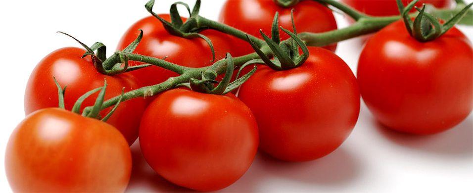 Dyrk tomatene selv. Det er enklere enn du tror