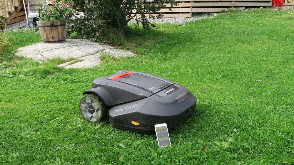 GUIDE: Dette bør du vite før du kjøper robotgressklipper
