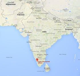 Her, sånn omtrent, ligger Cochin International Airport.