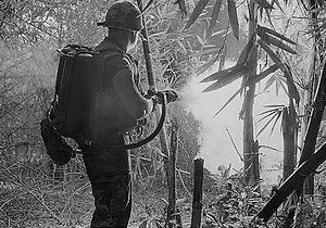 Amerikansk soldat bruker flammekaster under Vietnam-krigen.