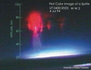 Det første fargebildet av en lysånd fotografert fra fly.