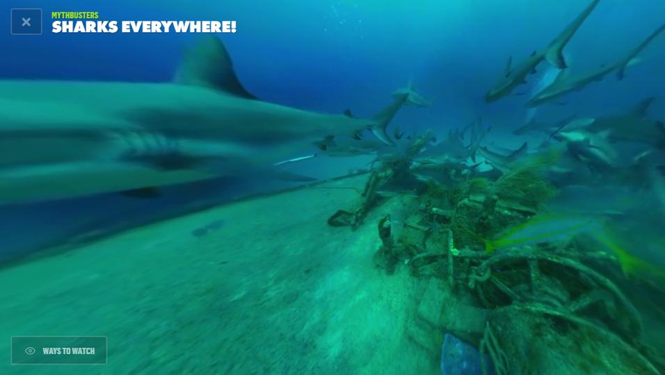 Mythbusters-videoer med haier er blant de nye VR-klippene fra Discovery.