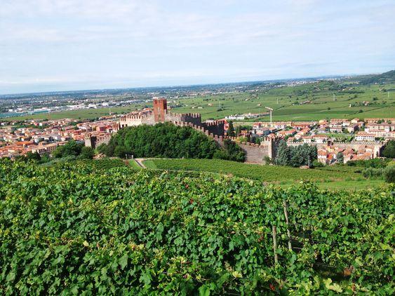 Fra de høyereliggende vinmarkene ser du ned på flatlandet som produserer de enklere soavene.