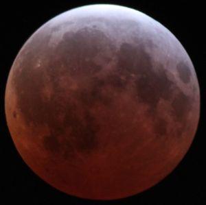 Måneformørkelsen i april i år.
