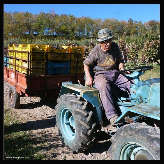 Her er bestefar Generoso på traktoren.