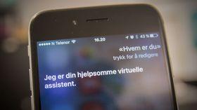 Apples taletjeneste Siri ser ut til å få en seriøs konkurrent.