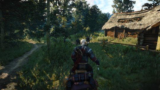 Geralt møter på mange farlige skapninger på sine reiser.