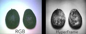 Bilde av en avocado tatt med vanlig kamera (t.v.) og HyperCam.