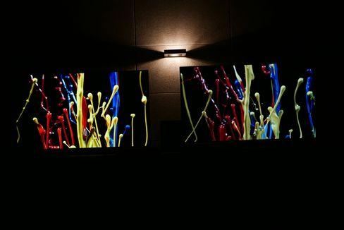 Utvidet fargerom gir langt bedre farger. Her ser du en OLED med utvidet spekter og HDR til venstre.