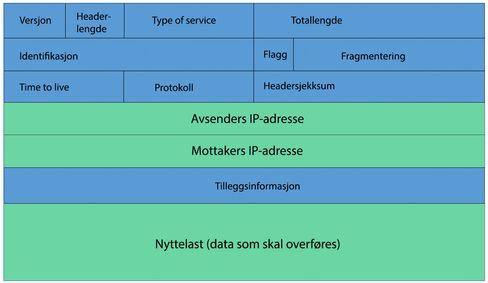 Slik er en IP-pakke (i IPv4) bygget opp. I denne artikkelen har vi konsentrert oss om det du ser i grønt: Avsenders og mottakers IP-adresse, samt nyttelasten – den informasjonen som skal overføres mellom to enheter i nettverket.