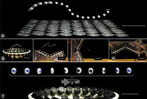 Illustrasjonsbilde av teknologien, hentet fra forskningsdokumentet.