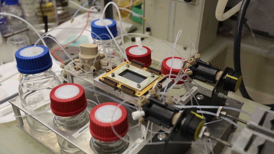 IBM vil bruke «Elektronisk blod» i neste generasjon datamaskiner