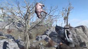 Flyvende dyr er også noe du kan snuble over.