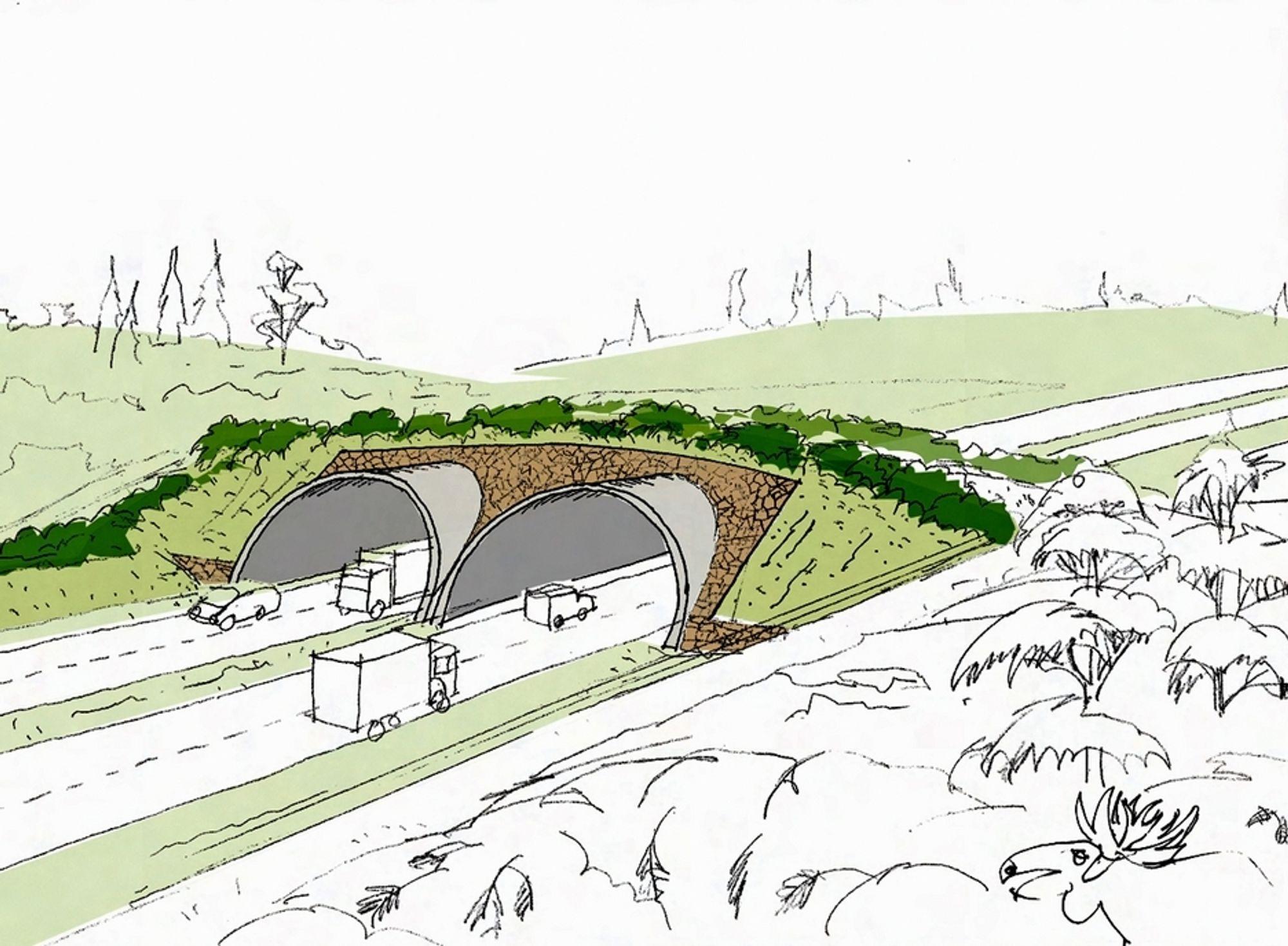 Ingen ville gi anbud på levering av betongen til denne viltovergangen, men Loe Betongelementer fikk kontrakten etter forhandlinger med Vegvesenet. (Ill.: Statens vegvesen)