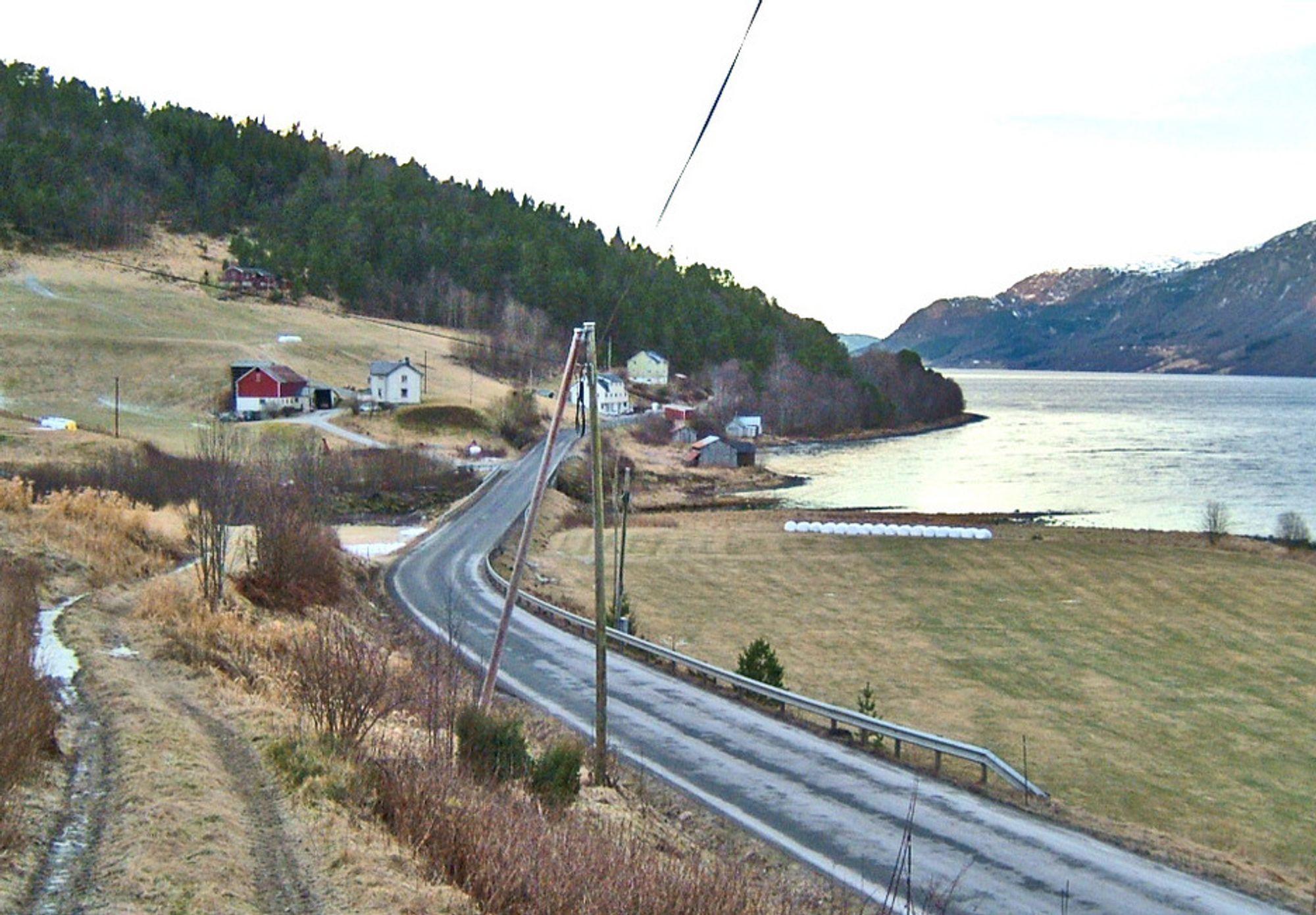 Dette partiet ved Rodal ved Vinjefjorden inngår i den første parsellen som skal utbedres mellom Renndalen og Staurset. Her skal vegen følge dagens trasé, men den nye E 39 vil få vesentlig høyere standard enn i dag.